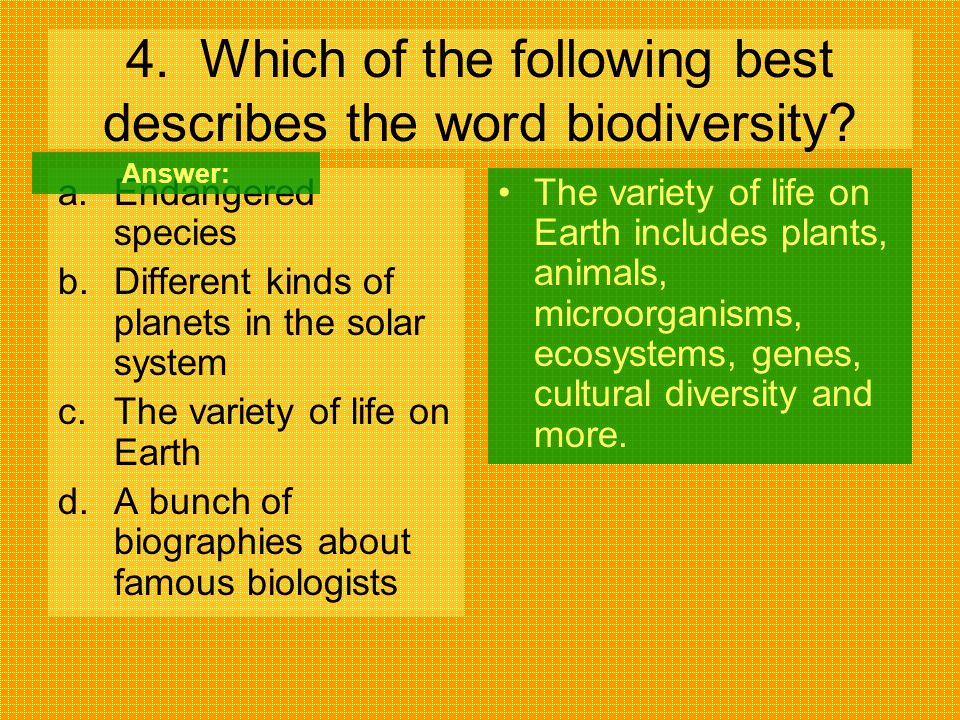 4. Which of the following best describes the word biodiversity