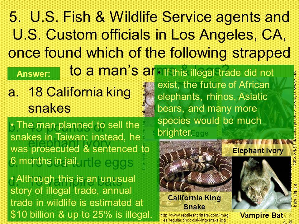 5. U. S. Fish & Wildlife Service agents and U. S
