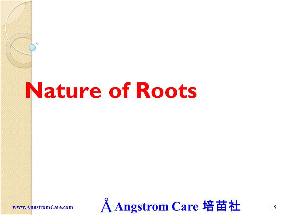 Nature of Roots www.AngstromCare.com