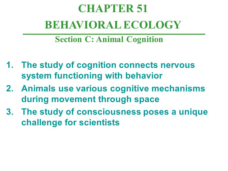 Section C: Animal Cognition