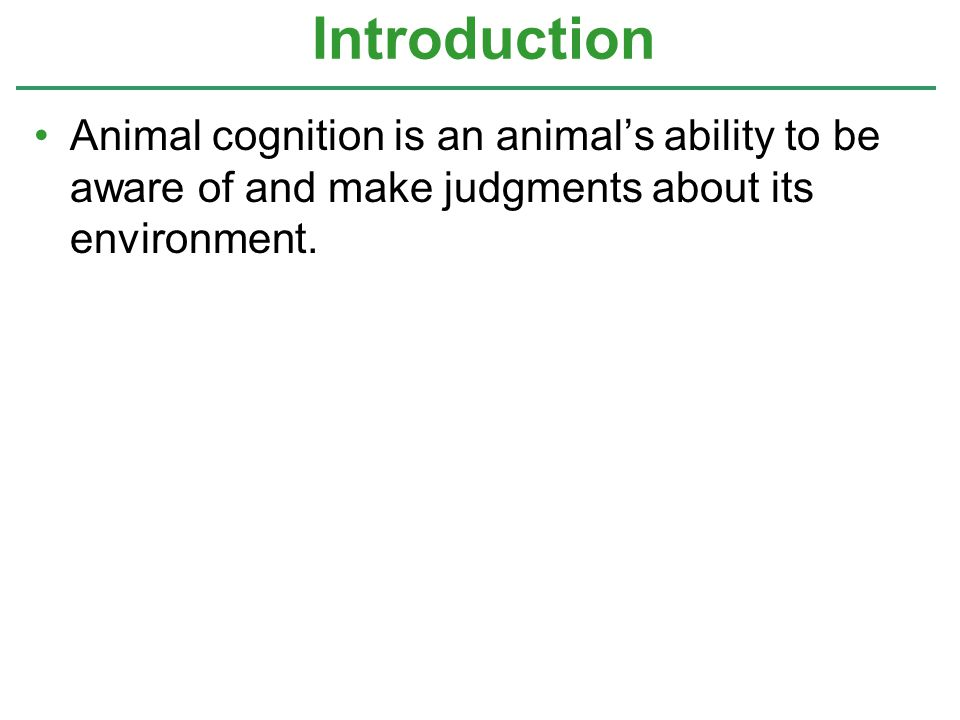 Introduction Animal cognition is an animal's ability to be aware of and make judgments about its environment.