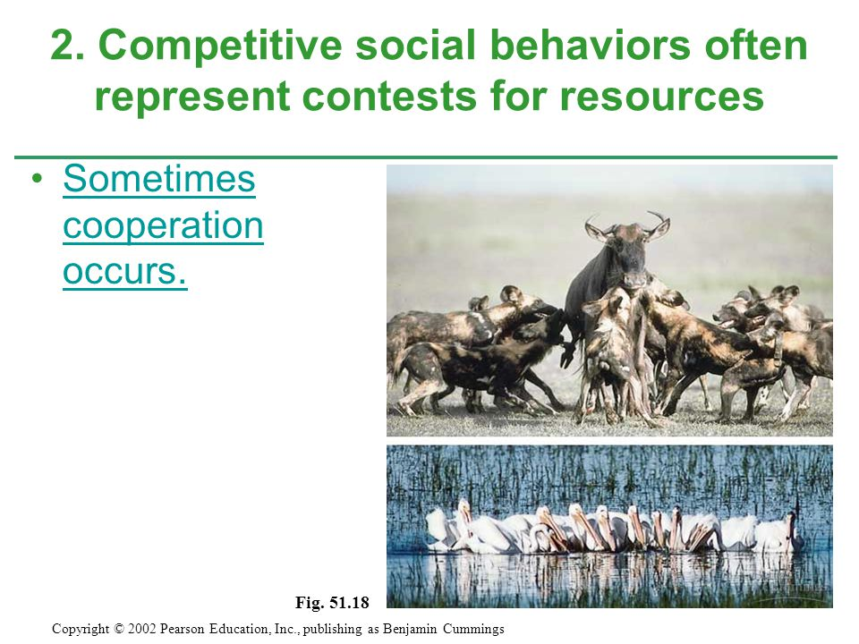 2. Competitive social behaviors often represent contests for resources