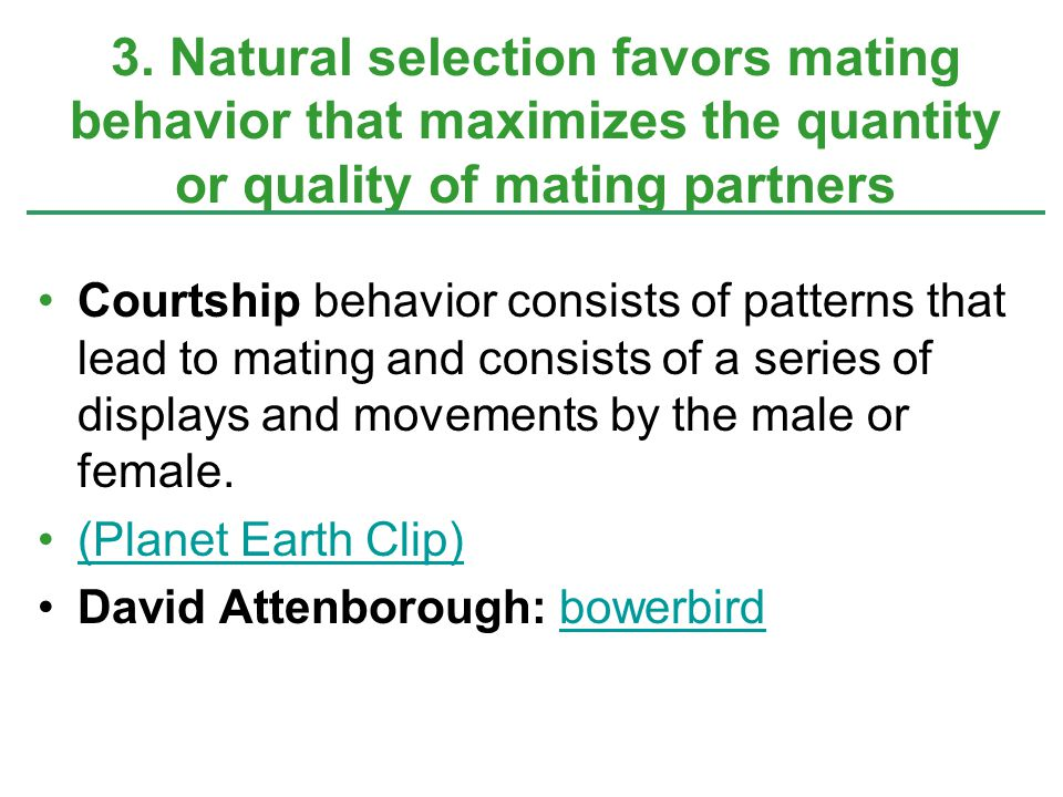 3. Natural selection favors mating behavior that maximizes the quantity or quality of mating partners