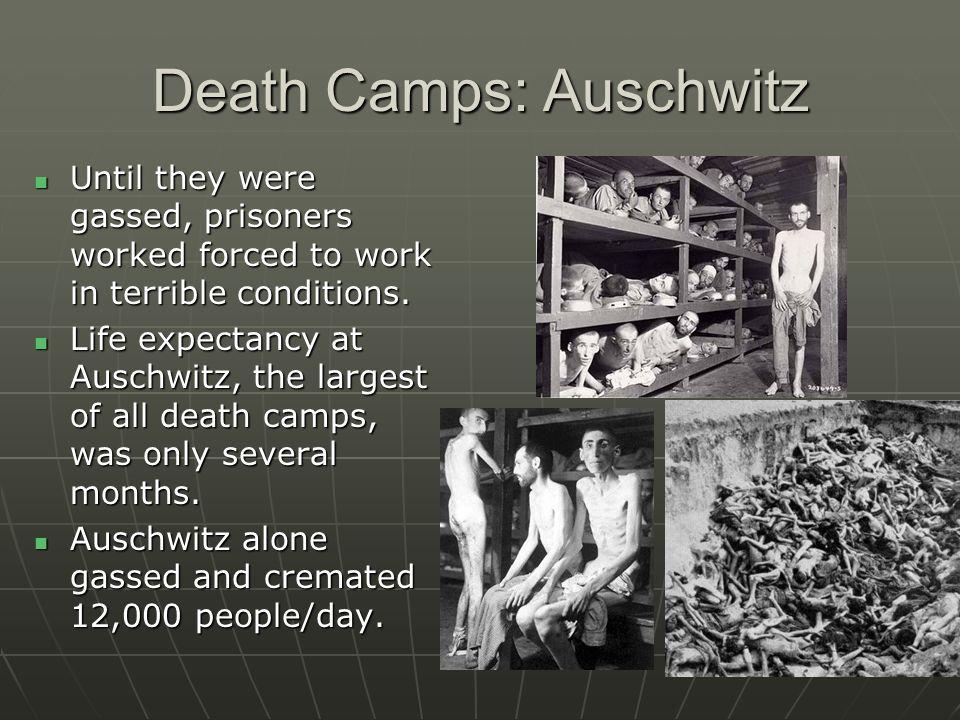 Death Camps: Auschwitz