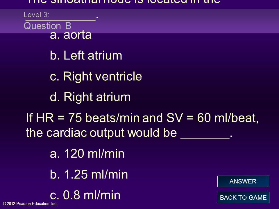 The sinoatrial node is located in the __________. a. aorta