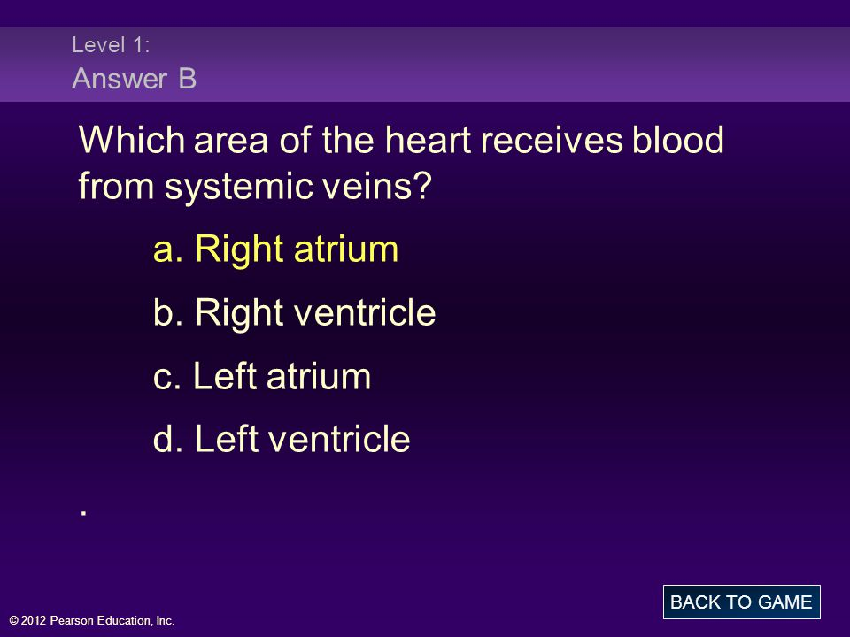 Which area of the heart receives blood from systemic veins