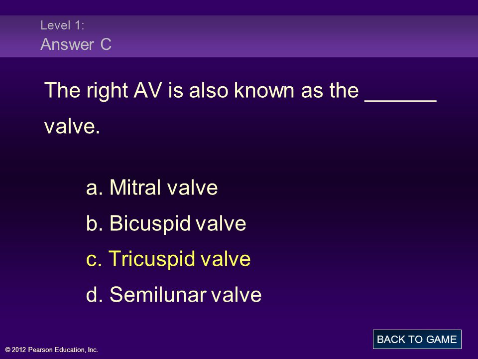 The right AV is also known as the ______ valve. a. Mitral valve