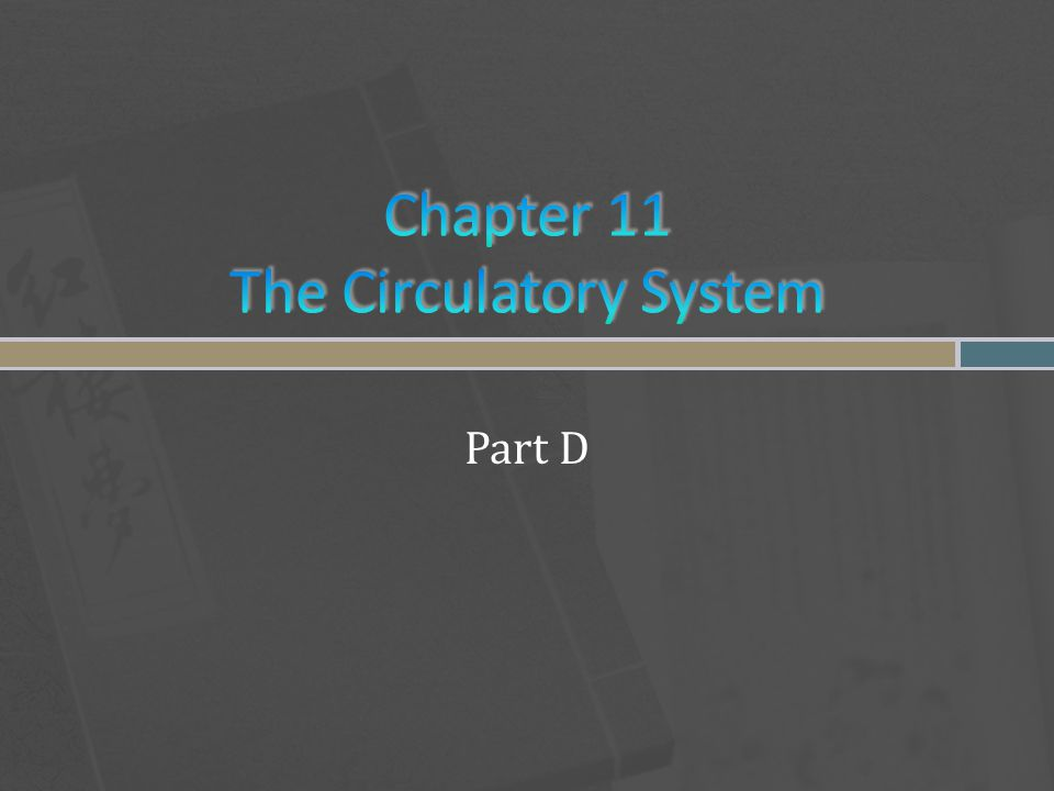 Chapter 11 The Circulatory System