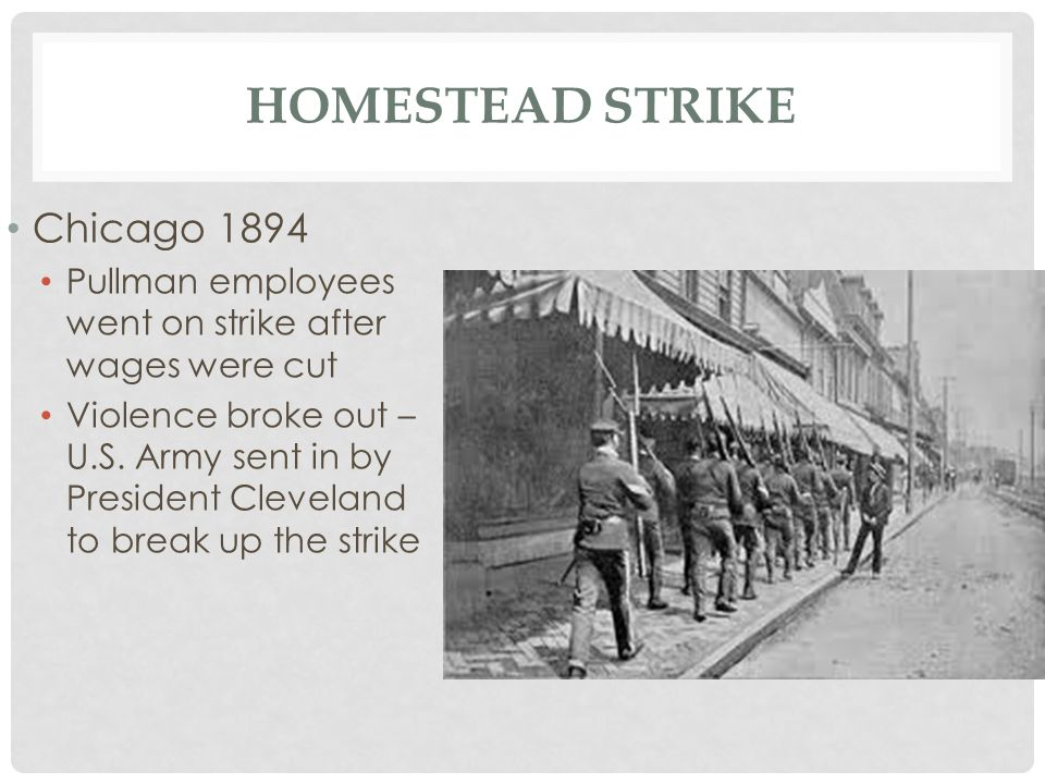Homestead Strike Chicago 1894