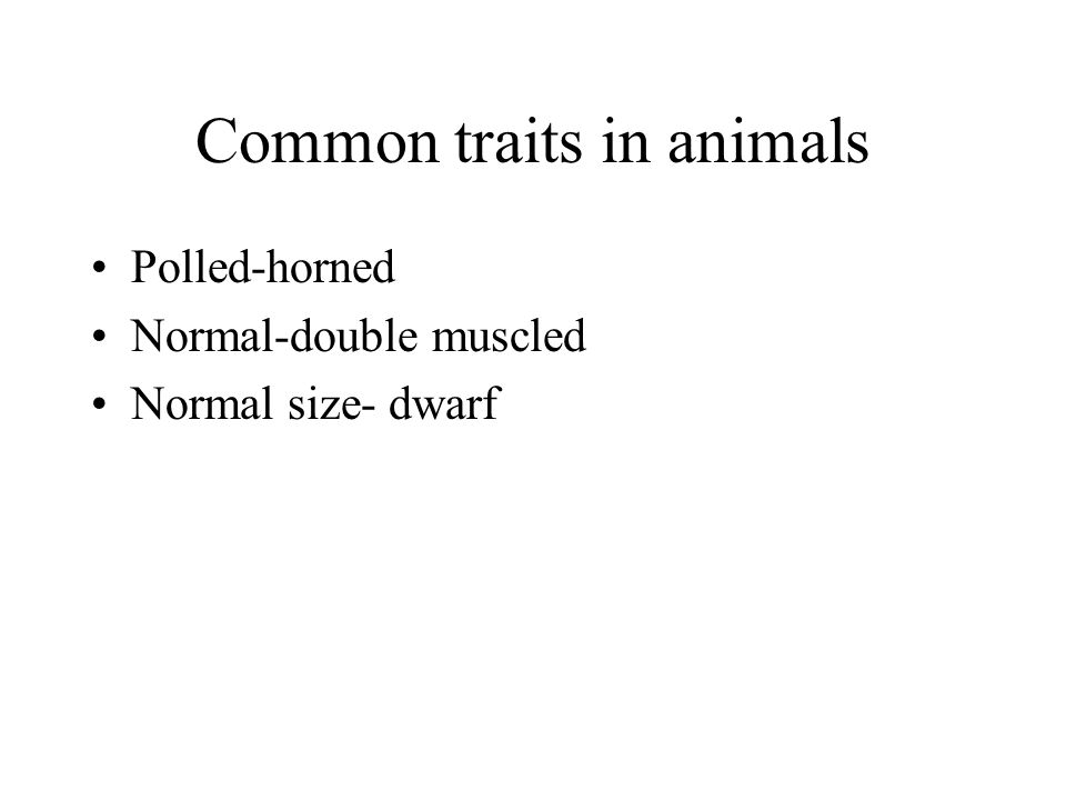 Common traits in animals