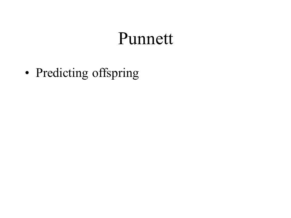 Punnett Predicting offspring