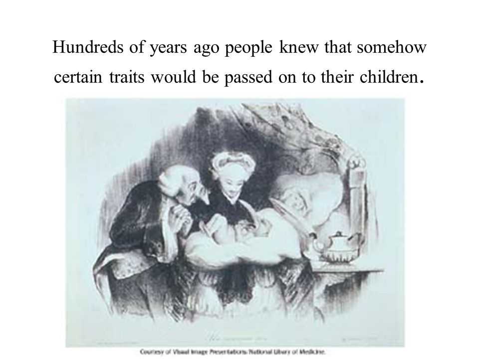 Hundreds of years ago people knew that somehow certain traits would be passed on to their children.