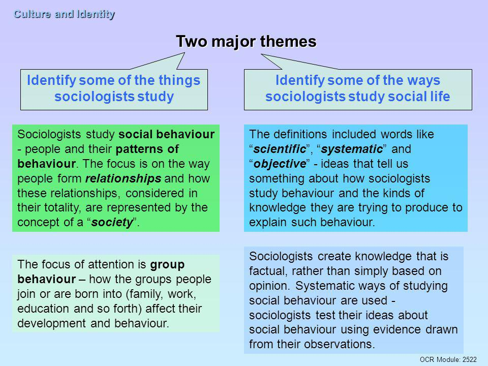Identify some of the ways sociologists study social life