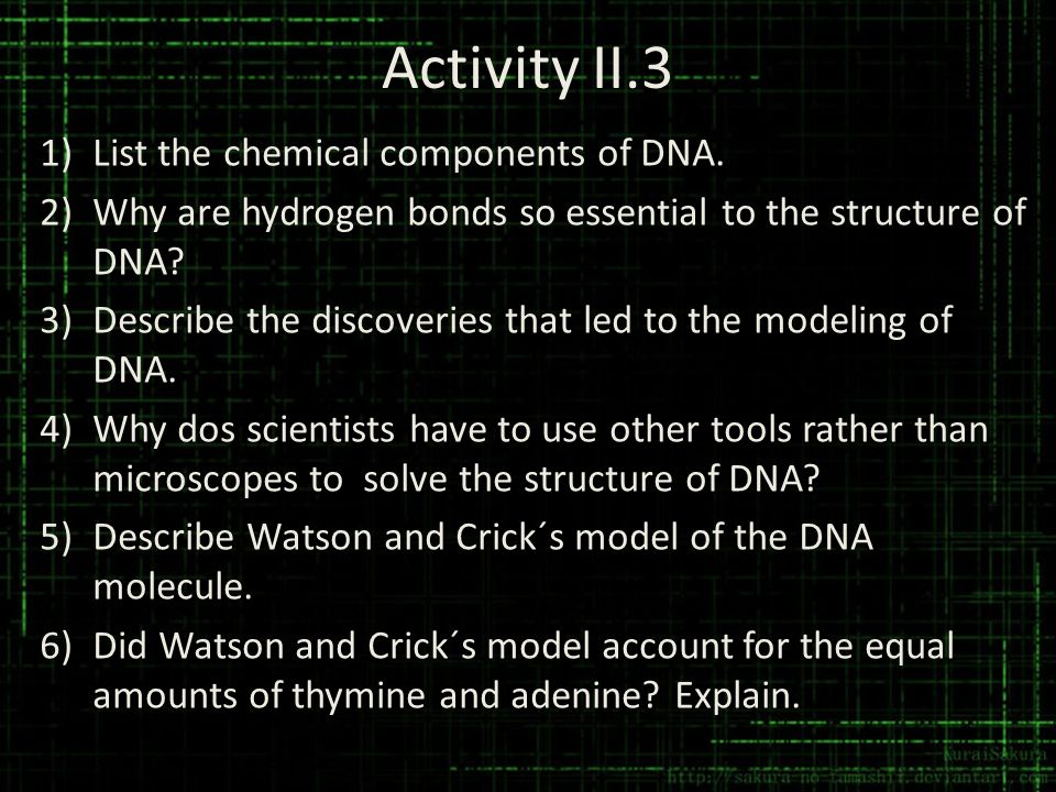 Activity II.3 List the chemical components of DNA.