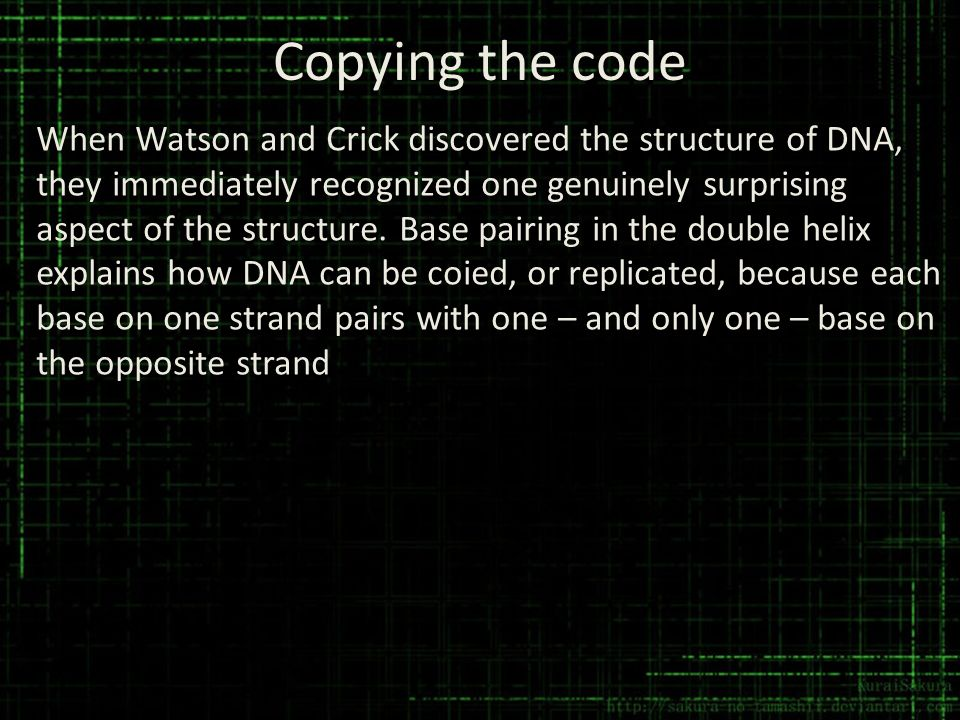 Copying the code