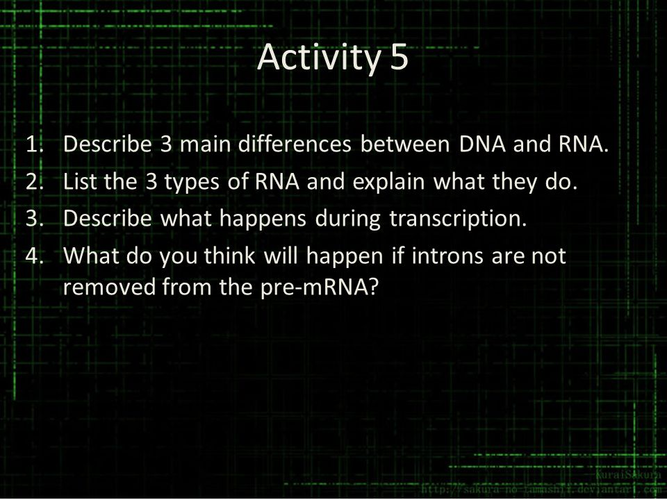 Activity 5 Describe 3 main differences between DNA and RNA.