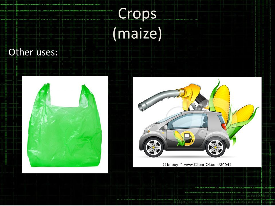 Crops (maize) Other uses: