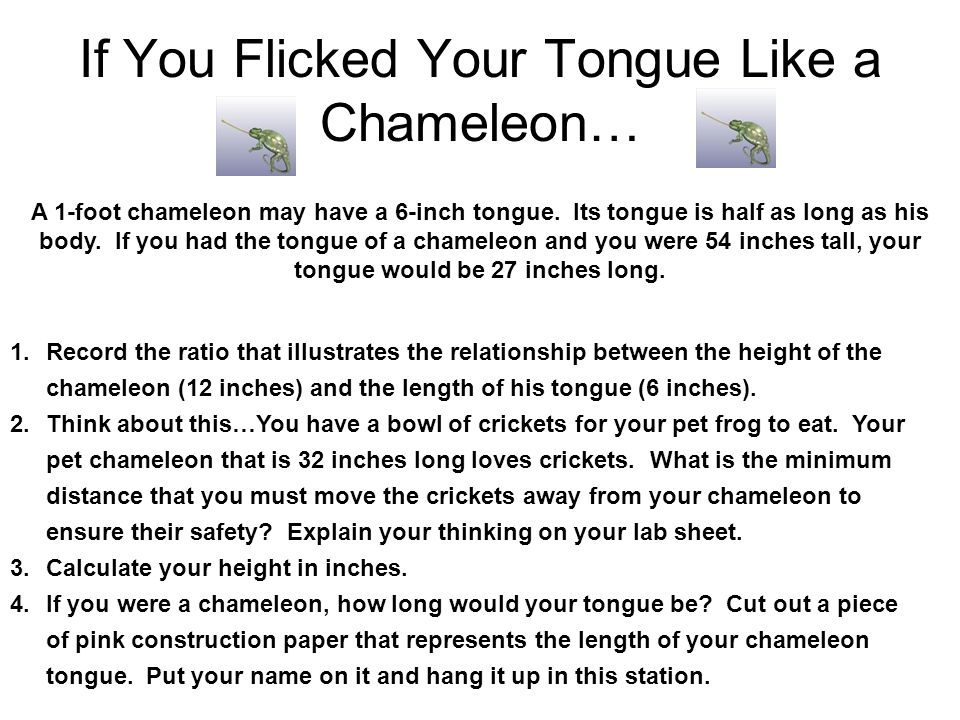 If You Flicked Your Tongue Like a Chameleon…