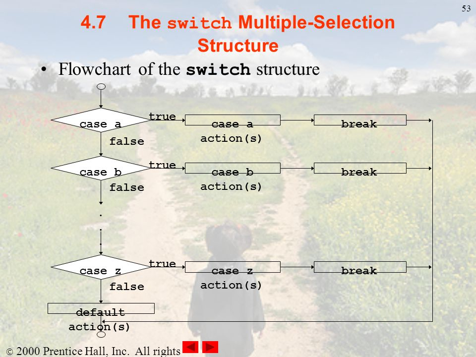 4.7 The switch Multiple-Selection Structure