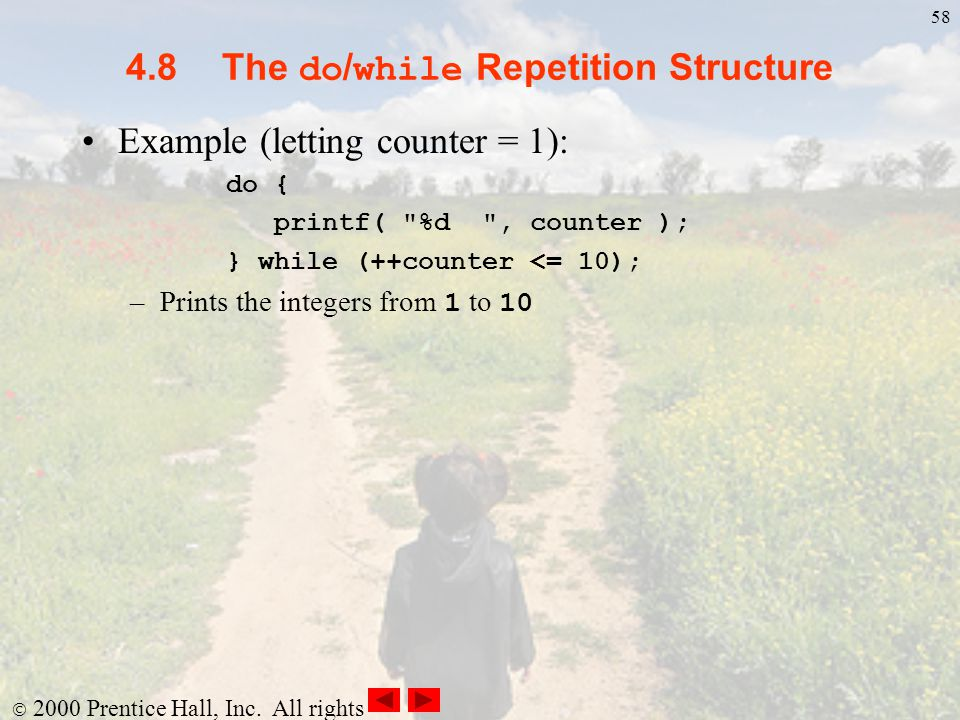 4.8 The do/while Repetition Structure