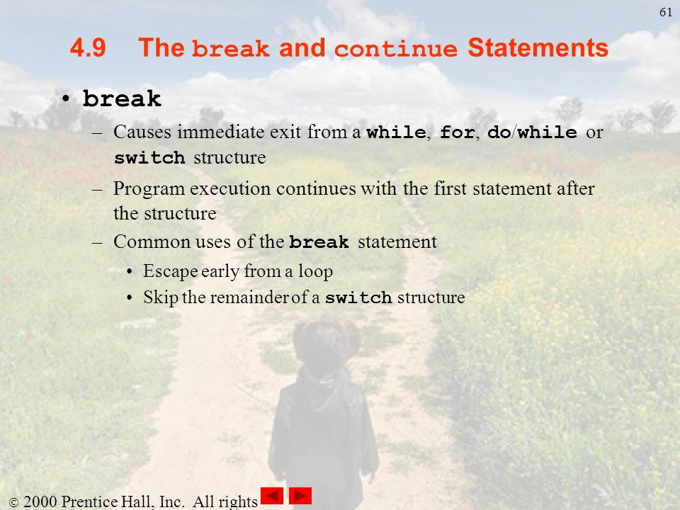 4.9 The break and continue Statements