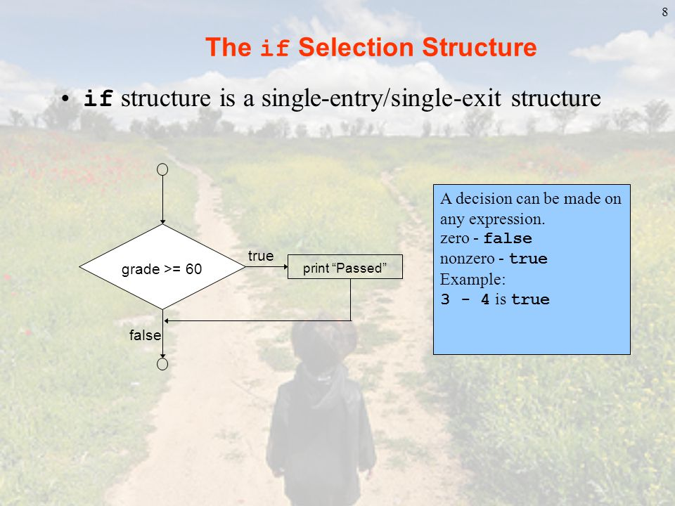 The if Selection Structure