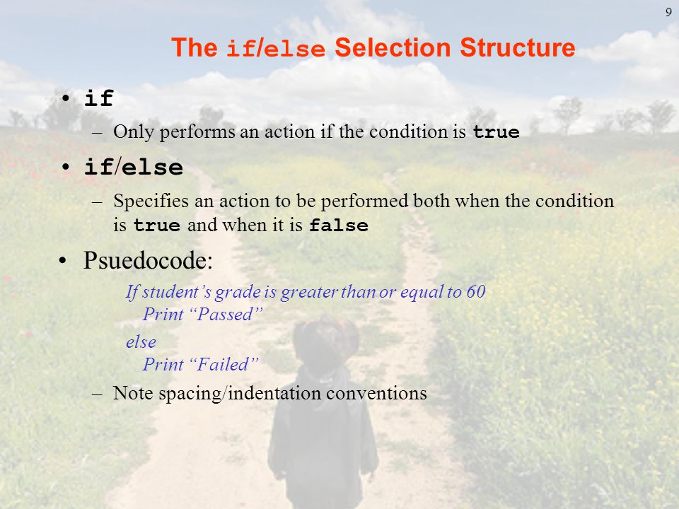 The if/else Selection Structure