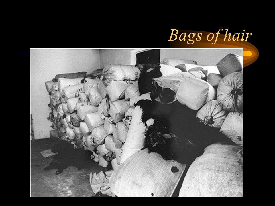 Bags of hair
