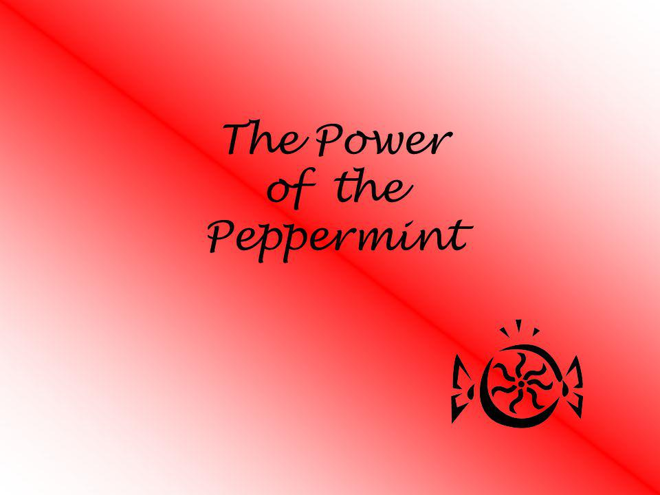 The Power of the Peppermint