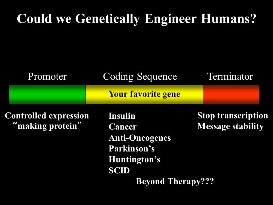 Could we Genetically Engineer Humans Controlled expression