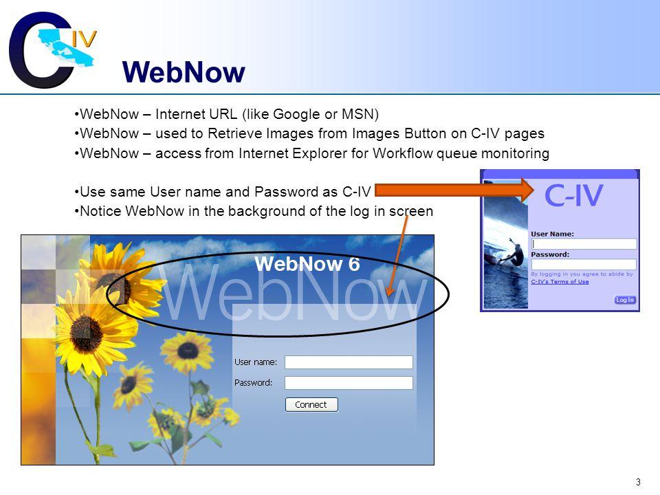 WebNow WebNow – Internet URL (like Google or MSN)