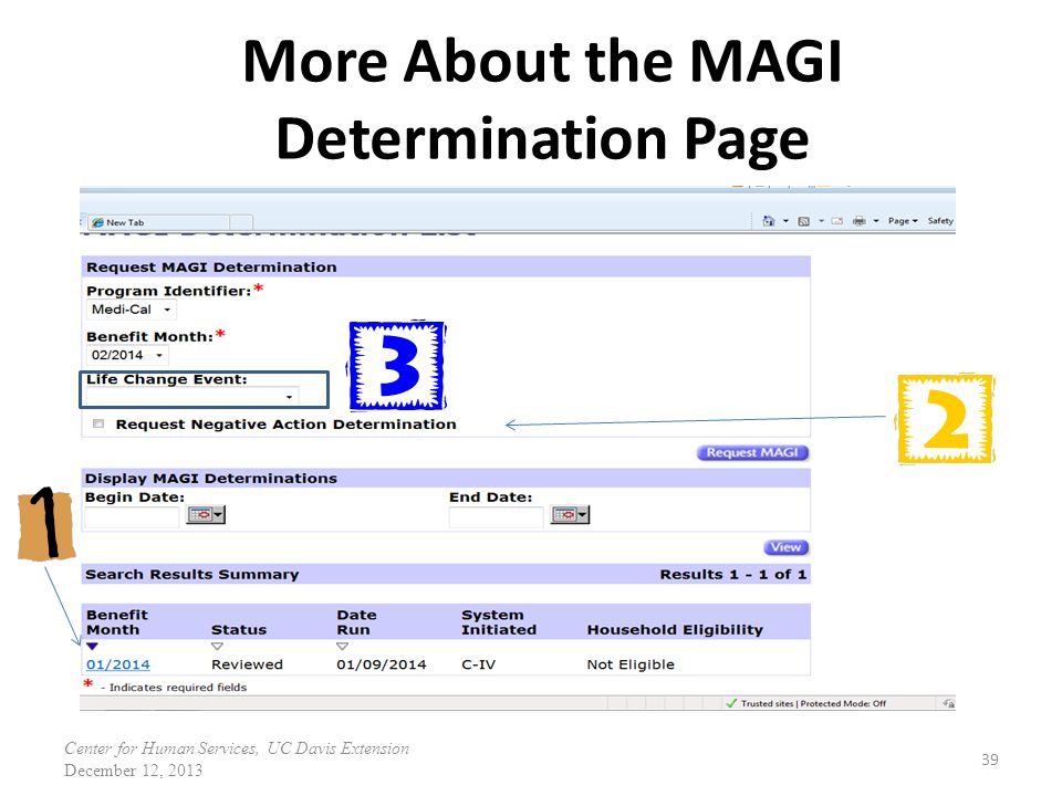More About the MAGI Determination Page