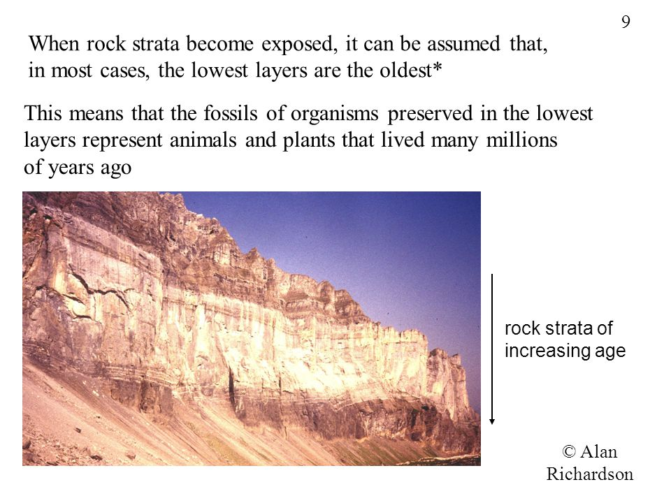 When rock strata become exposed, it can be assumed that,