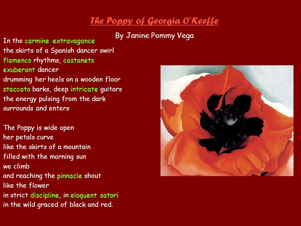 The Poppy of Georgia O'Keeffe