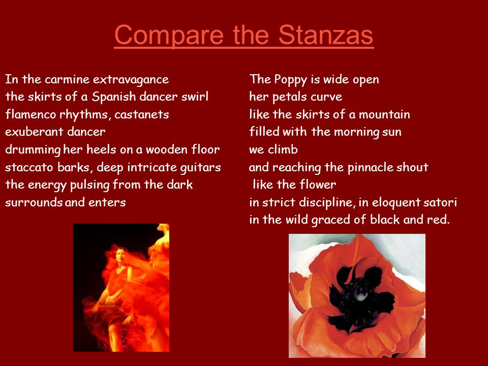 Compare the Stanzas In the carmine extravagance The Poppy is wide open