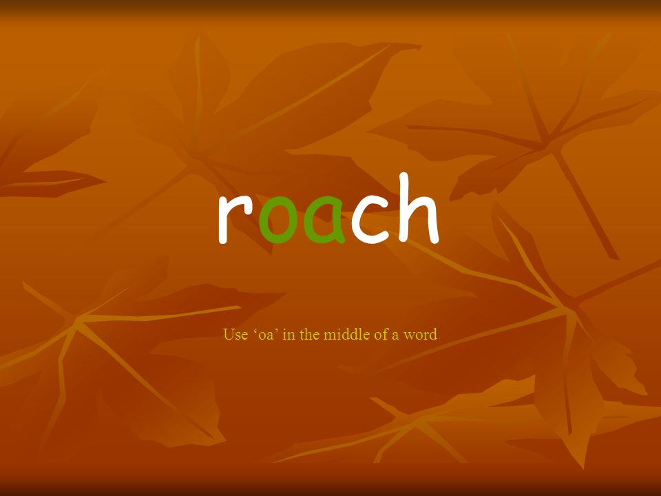 roach Use 'oa' in the middle of a word