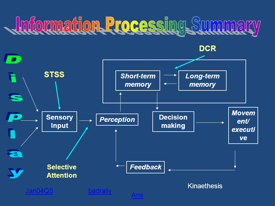Information Processing Summary