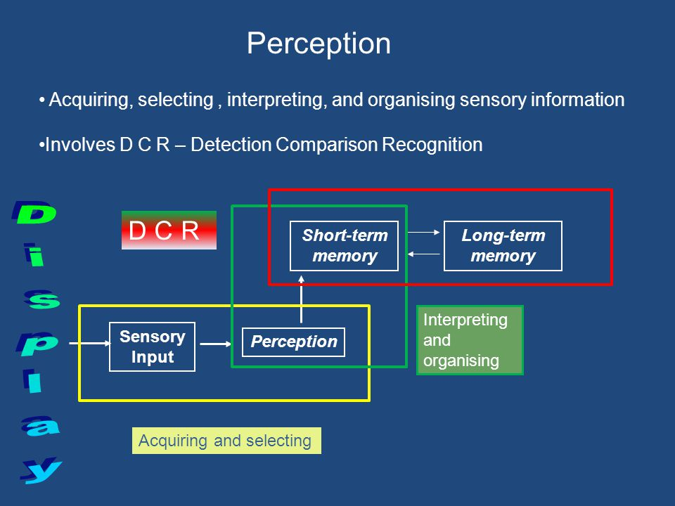 Display Perception D C R