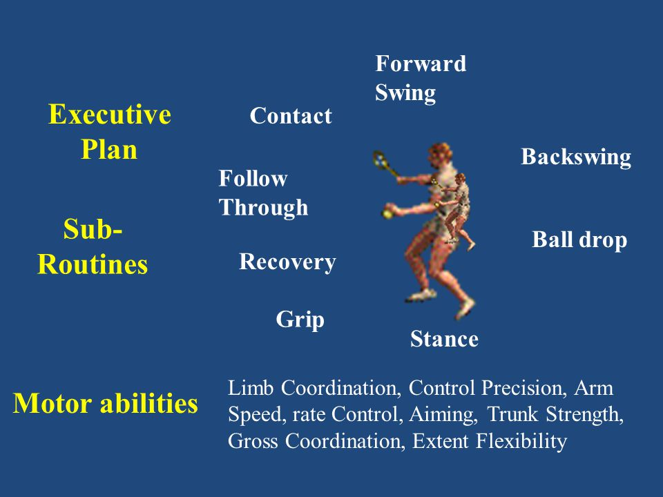 Executive Plan Sub-Routines