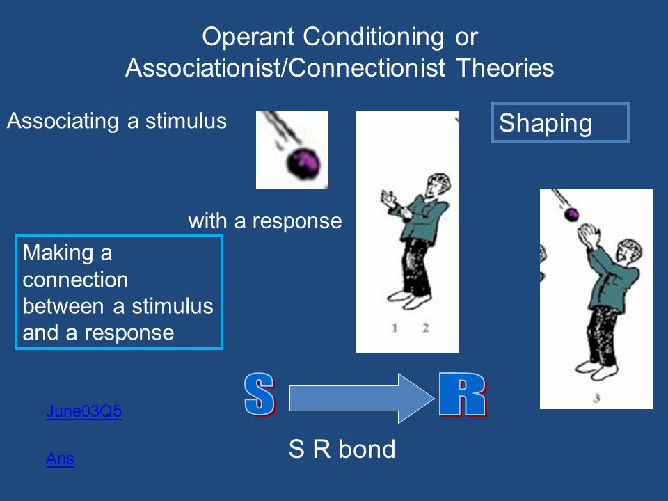 Operant Conditioning or Associationist/Connectionist Theories