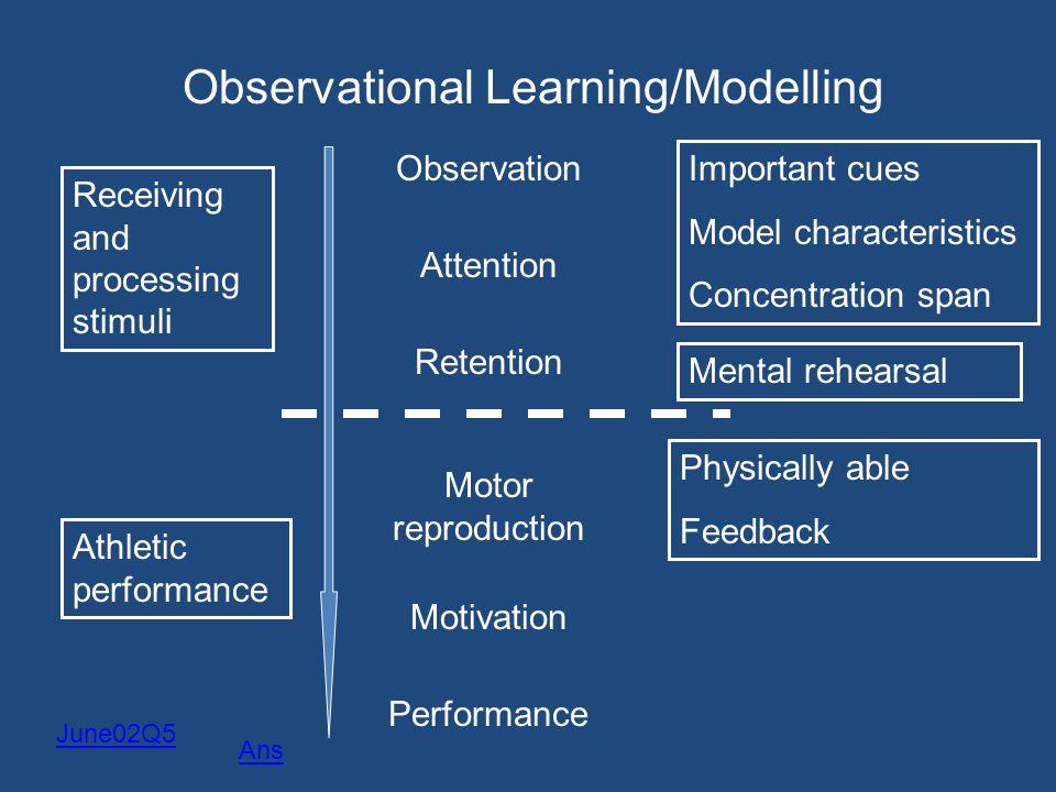 Observational Learning/Modelling