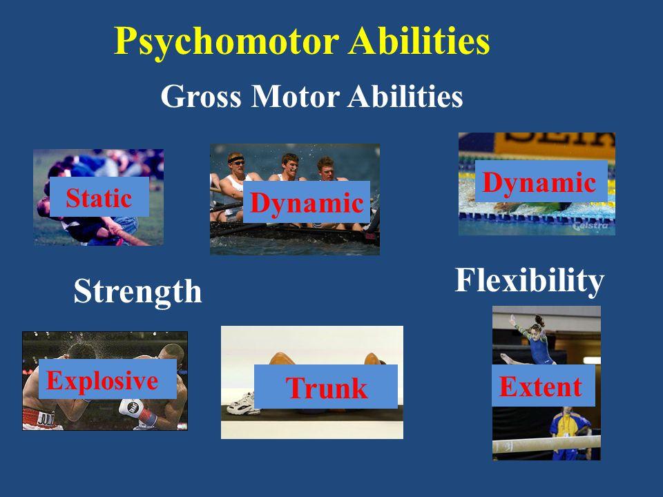 Psychomotor Abilities