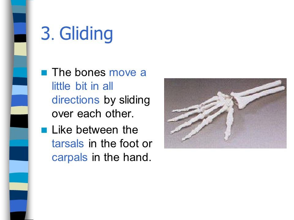 3. Gliding The bones move a little bit in all directions by sliding over each other.