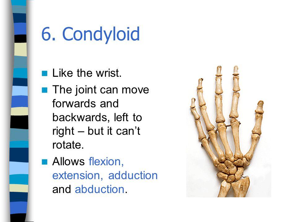 6. Condyloid Like the wrist.