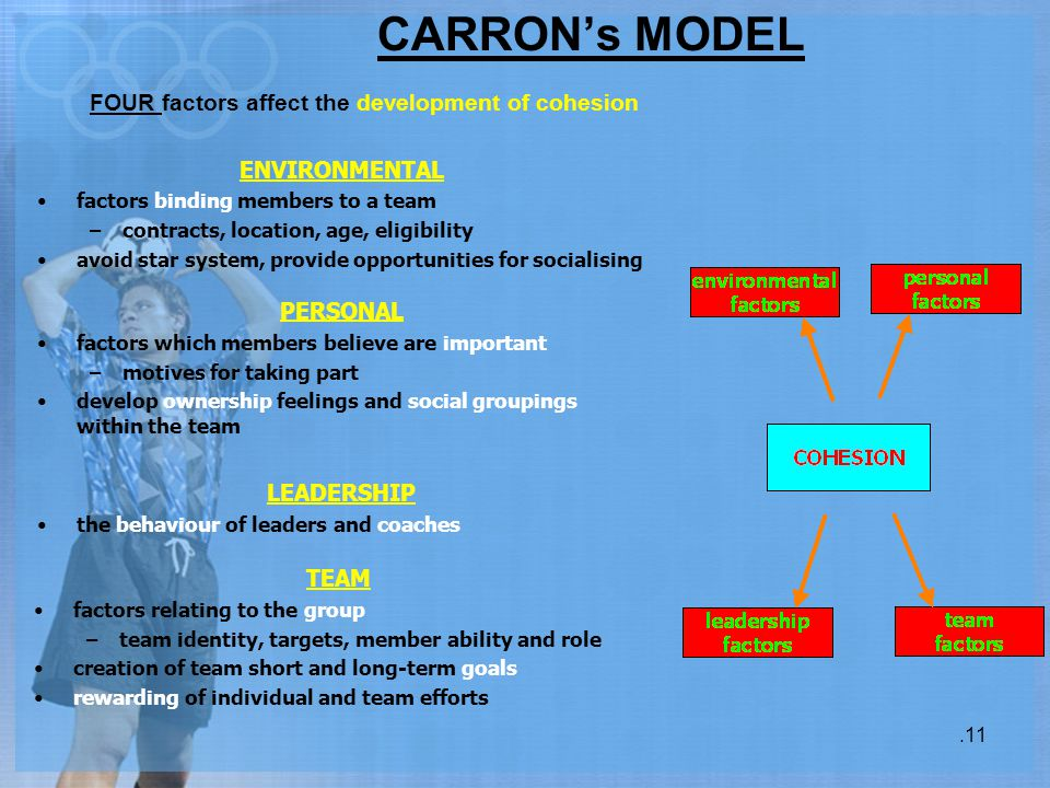 CARRON's MODEL FOUR factors affect the development of cohesion