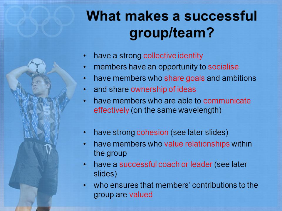What makes a successful group/team
