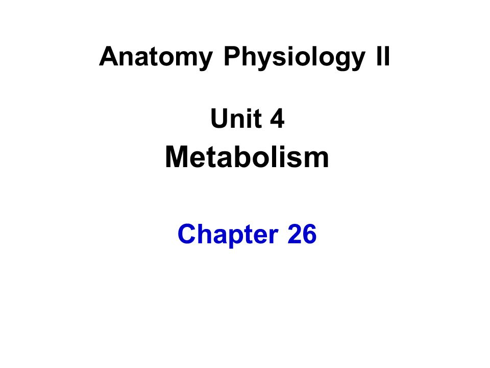 Unit 4 Metabolism Chapter 26