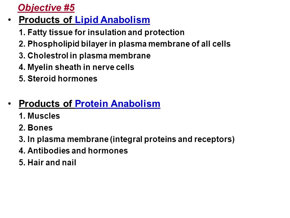 Products of Lipid Anabolism
