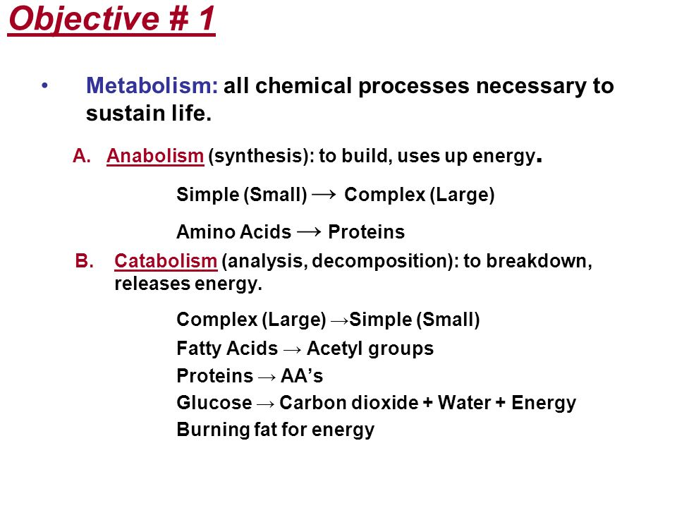 Objective # 1 Complex (Large) →Simple (Small)