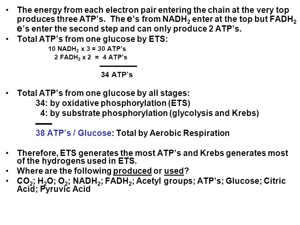 Total ATP's from one glucose by ETS: